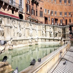 The Gaia fountain in Piazza del Campo, Siena, Tuscany, Italy Stock Footage