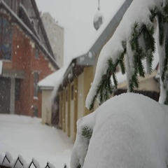 Blizzard, Ivano-Frankivsk, Ukraine Stock Footage