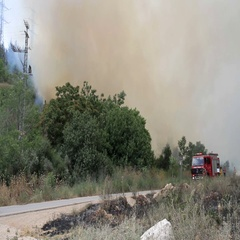 Fire Truck near Burning Forest Stock Footage