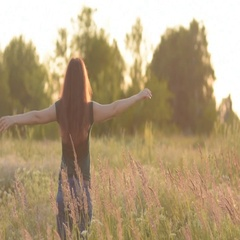 Beautiful model girl dressed in jeans and a green shirt on the field in sunlight Stock Footage