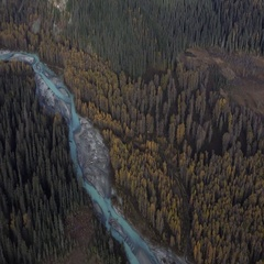 Majestic Mountain Emerald River Flowing Through Colorful Forest Aerial Stock Footage