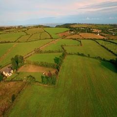 Lush Green Farmland in Waterford, Ireland Stock Footage
