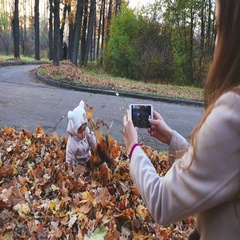 Mother makes footage of baby at autumn park, mobile phone Stock Footage
