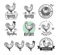 Rooster. Chicken logotypes set. Hen meat and eggs vintage produce elements. Stock Illustration