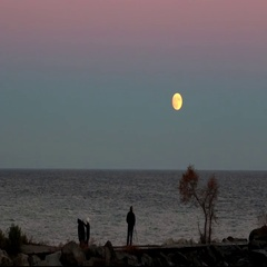 Supermoon Rising With People by Water Stock Footage