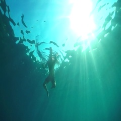 SLOW MOTION, CLOSE UP: Scared swimmer trying to escape from shark attacking him Stock Footage