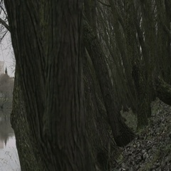Panorama from trees to polluting power plant with heavy clouds of wastes Stock Footage