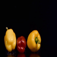 Colored peppers over white background Stock Footage