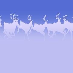 Reindeer Herd - Running Loop - Light Blue Silhouettes Stock Footage