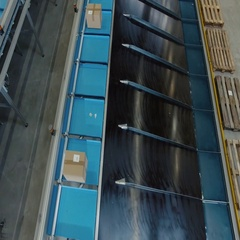 Parcels are Moving on Belt Conveyor at Post Sorting Office. Top Down View. Stock Footage