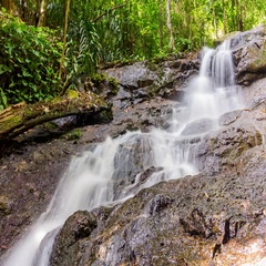 Timelapse of the waterfall in the jungle of Phuket Island, Thailand Stock Footage