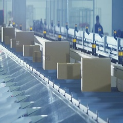 Parcels are Moving on Belt Conveyor at Post Sorting Office. Stock Footage