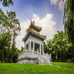 Timelapse of buddha temple in Lumpini central park in Bangkok, Thailand Stock Footage