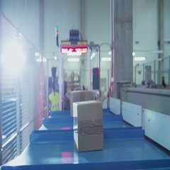 Parcels are Moving on Belt Conveyor at Post Sorting Office. Box POV. Stock Footage