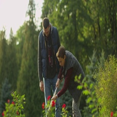 Father and Son Work with the Shovel in the Garden.  Stock Footage