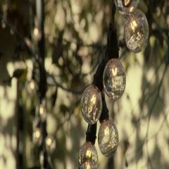 CU Light Bulbs on String Stock Footage