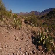 Low Angle Dolly Up Establishing Shot Arizona Desert   Stock Footage