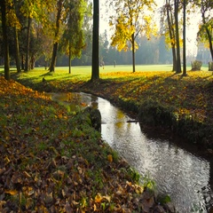Little stream flowing in a park in autumn with people in the background Stock Footage