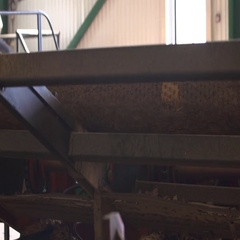 Machine saws round logs Stock Footage