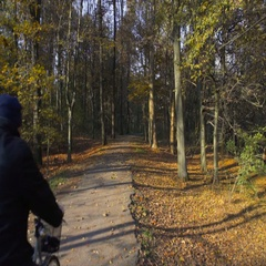 Old men riding bikes on an alley of a park in autumn Stock Footage
