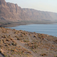 Dead Sea Landsacpe Stock Footage
