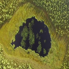 Aerial rotating view of a bog lake with winding peat shores in Finland Stock Footage