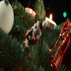 The Christmas tree is a decorated evergreen coniferous tree, real or artificial Stock Footage