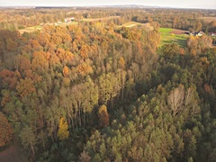Aerial colorful forest in fall with fly over on a sunny day 4K Stock Footage