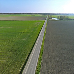 Aerial of road between two big farm fields and car approaching 4K Stock Footage
