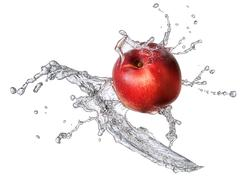 Water splash with nectarine isolated Stock Photos