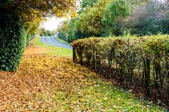 UK Motorway in Autumn Stock Photos