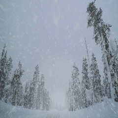 Driving on an Empty Winter Highway and Snowfall Stock Footage