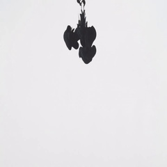 4K, black ink like smoke from an explosion, white background Stock Footage
