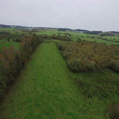 Inspirational - Organic cattle farm seen from above Stock Footage