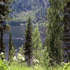View of Lake Teletskoye in the Altai Republic Stock Footage