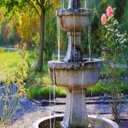 Garden architecture. A small fountain, near the fountain grow roses Stock Footage