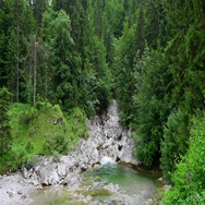 Beautiful small waterfall in the forest, Ausrian Alps Stock Footage
