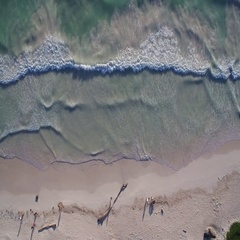 Aerial view of beach Stock Footage