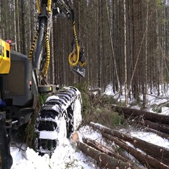 View of log loader busy working in forest Stock Footage