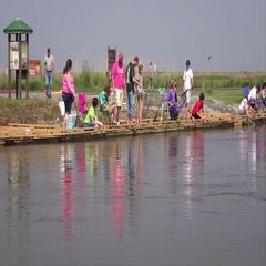 People Crabbing in Louisiana Canal Stock Footage