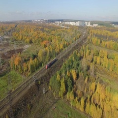 Train rides through an autumn forest on the horizon you can see the city. Stock Footage