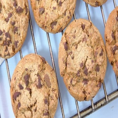 Fresh baked chocolate chip cookies on baking rack Stock Footage