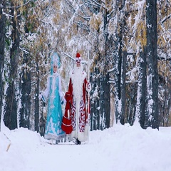 Man and Woman in fairy costumes walking in winter forest Stock Footage