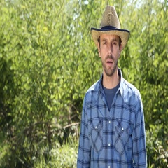 Confident Farmer Man Speech Holding Common Onion and Talking Trustful to Camera Stock Footage