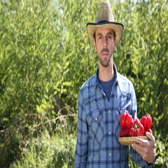 Confident Gardener Man Hold Red Pepper with Antioxidants Looking Camera Garden Stock Footage
