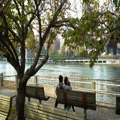 People hugging on a bench on the island of Roosevelt Island in the background Stock Footage