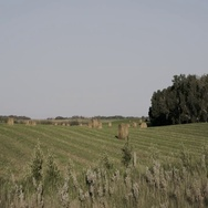 Hay bails in field behind wire fence in Manitoba Stock Footage
