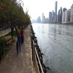Walk along the promenade Roosevelt Island Stock Footage