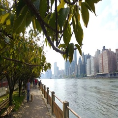 Panorama of the waterfront Roosevelt Island to Manhattan Stock Footage