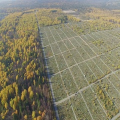 A large cemetery in Russia. Stock Footage